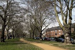 About BROOK GREEN